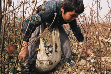 An Australian Modern Slavery Act: what does it mean for the fashion industry?