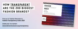 Fashion Transparency Index 2019