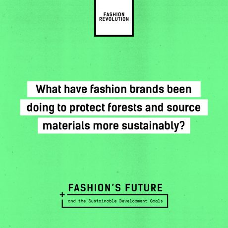 FashRev_MOOC_PartnerAssets-Question_8
