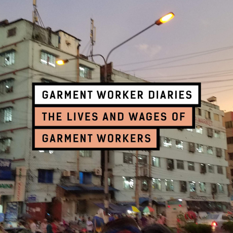 What's Happening with the Garment Worker Diaries?
