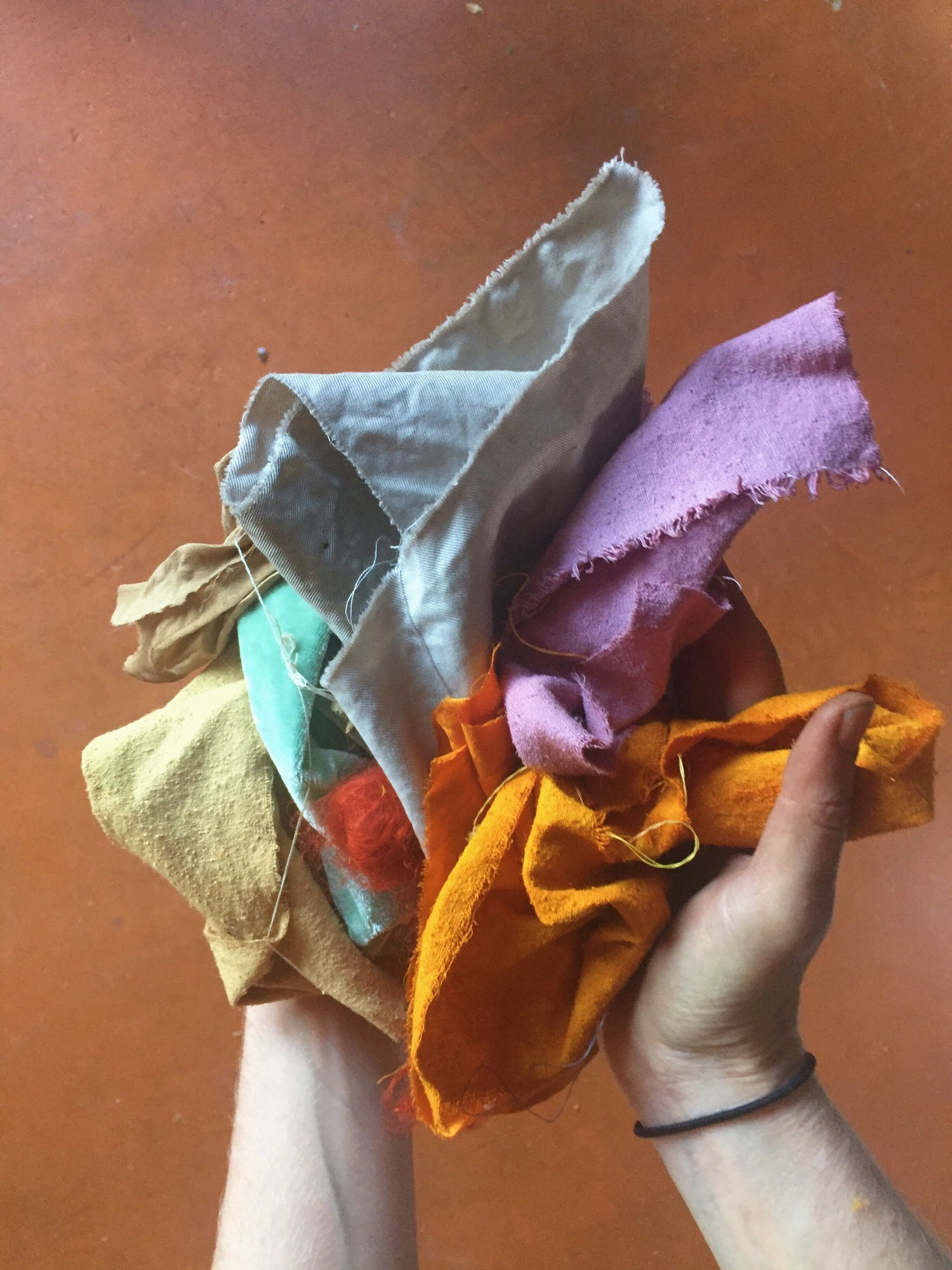 Natural Dyeing with Local Plants w/ Liz Spencer of The Dogwood Dyer