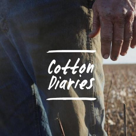 Lessons from the Cotton Diaries