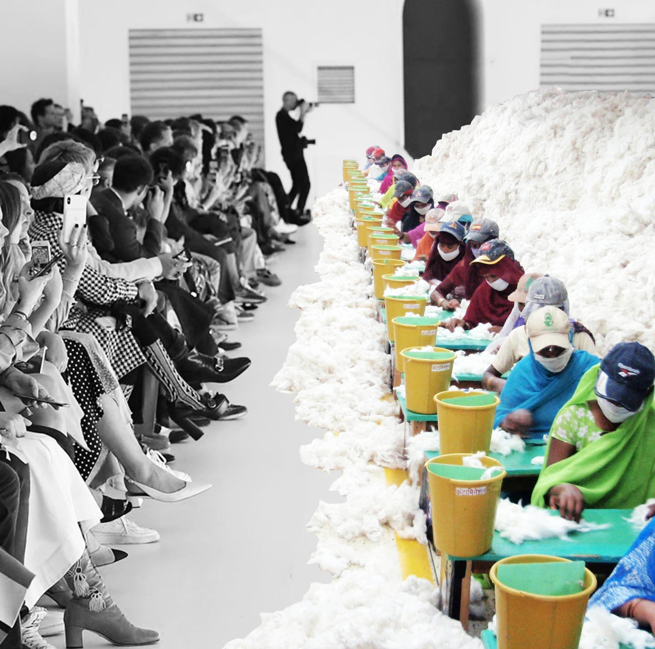Cotton catwalk